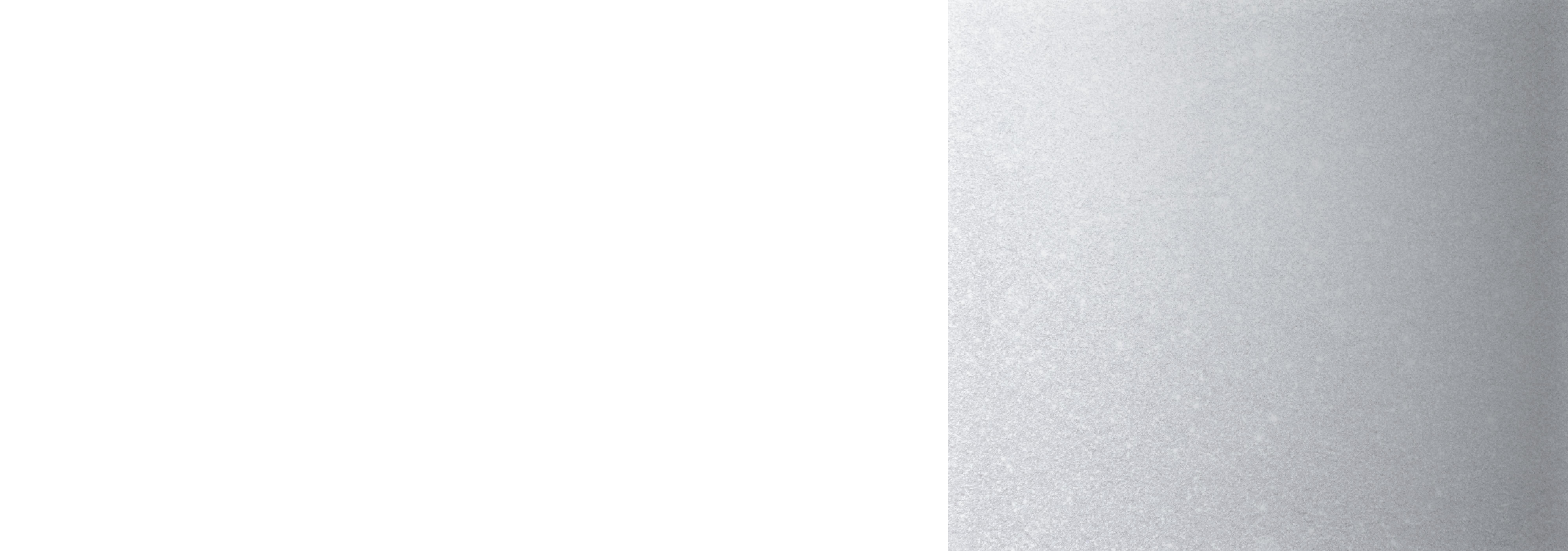 Banner-Silver-Shimmer